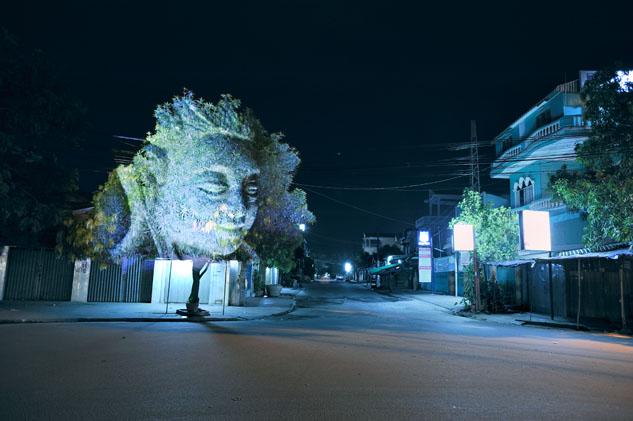 cambodian trees 06